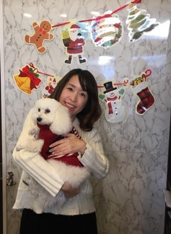 犬との海外旅行に必要な準備や手続き、帰国の注意 …